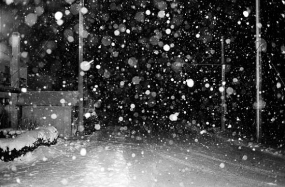 """Snow"" © Daido Moriyama (Courtesy of Miyanomori Art Museum)"